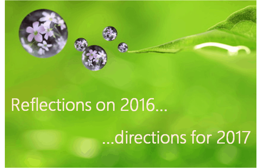 Reflections on 2016 – and 5 ways to grow business in 2017