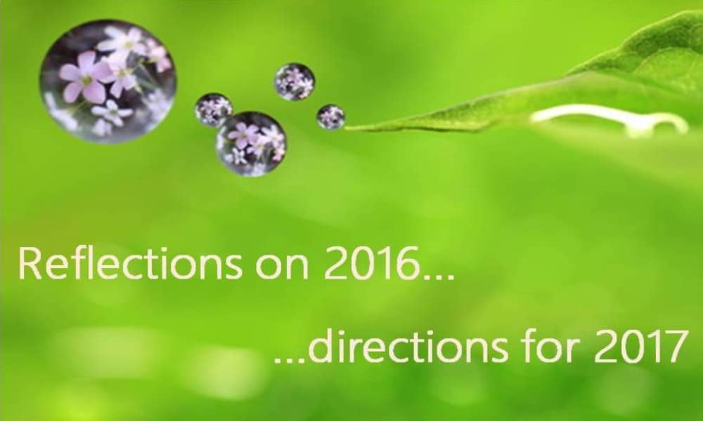 reflections-on-2016-directions-for-2017-feature-image