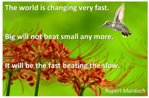 hummingbird with quote: 'it will be the fast beating the slow""