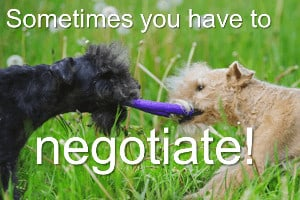two dogs pulling at a toy with words 'sometimes you need to negotiate'