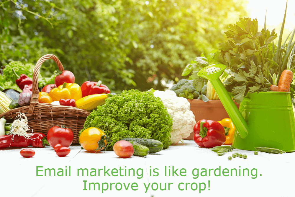 Email marketing is like gardening – improve your crop!