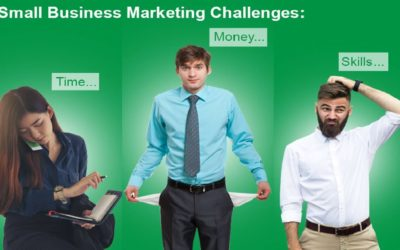 Small Business Marketing Survey Results