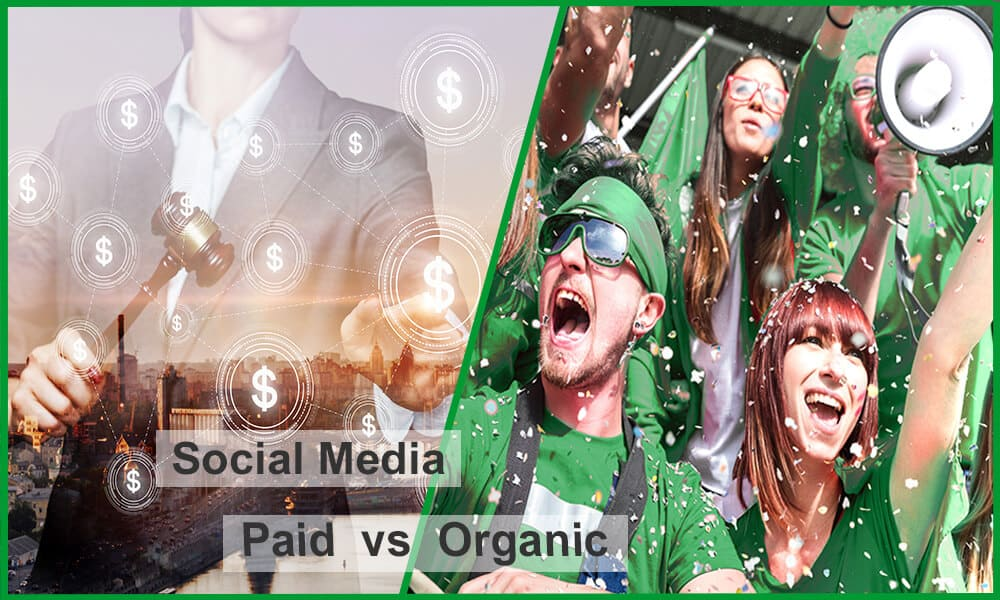 social-media-paid-vs-organic-feature-image-dark-green-borders