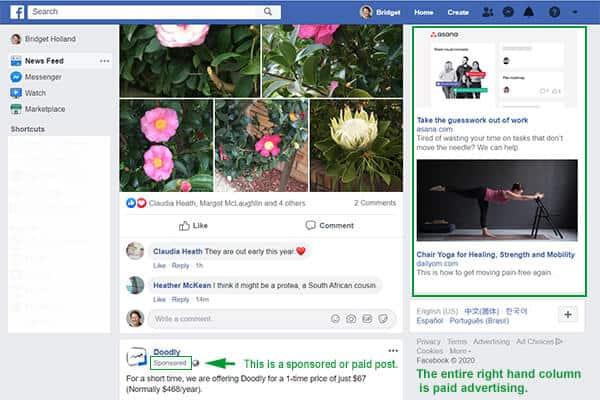 facebook-social-media-paid-advertising
